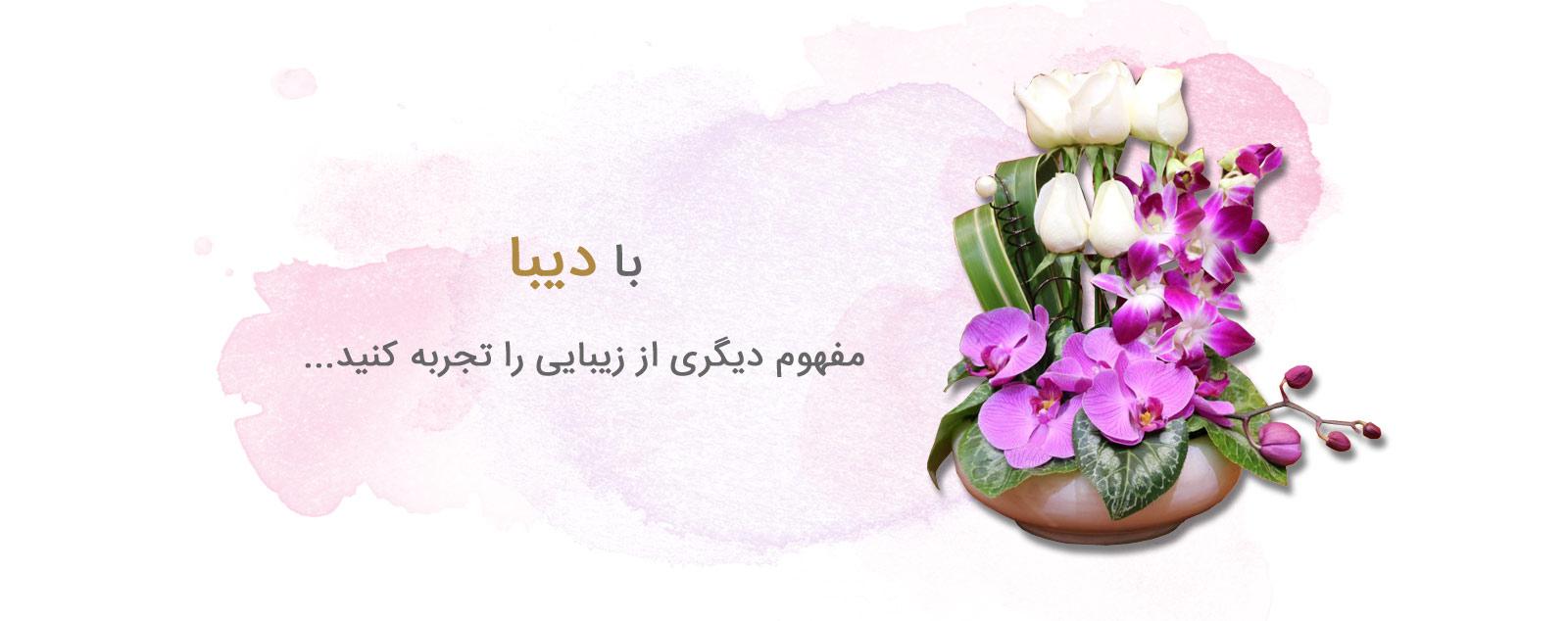 گل دیبا